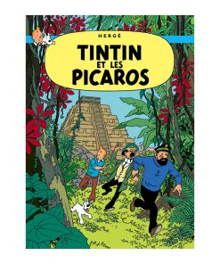 Picaros Cover Poster1
