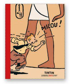 Hergé-Agenda-de-bureau-2022-Noir-et-blanc-et-couleurs-Papeterie-civile-Amazonie-BD